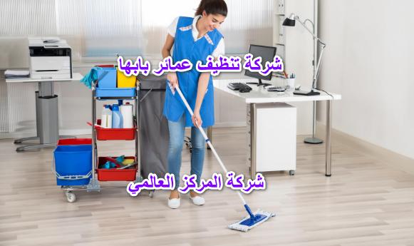 شركة تنظيف عمائر بابها